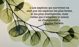 Citation de Charles Darwin